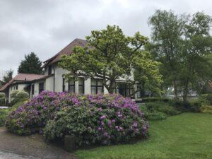 Burg. De Kockstraat